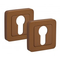 Square Satin Brass Escutcheon Pair with Euro Profile F8510SB